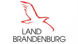 Land Brandenburg » Baumservice Schwielowsee