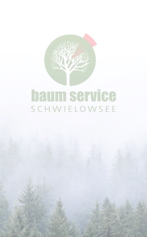 Uwe Paul » Baumservice Schwielowsee